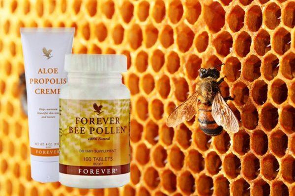 بروبوليس النحل